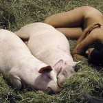 woman_sleeping_pigs